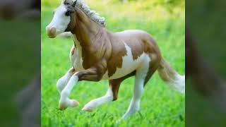 Фотографии лошадей Breyer / Breyer horses photos .