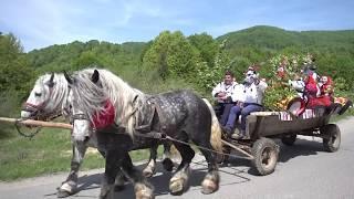 Vasi Oșanu-Zâi Văsâcă din Negresti