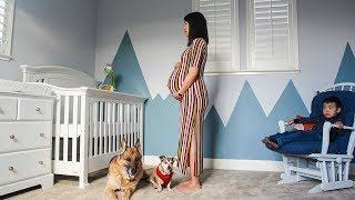 Time Lapse: Pregnant to Baby. Photo a day. VOL 2 (2019)