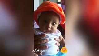 Baby niesha photo collection (bayi 0-3bulan) #babyniesha1 #cutebaby #babyborn