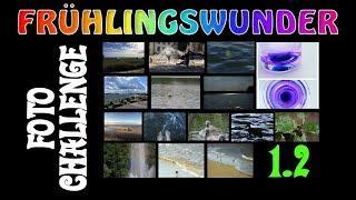 Alle nassen Bilder! (Challenge 1.2) ❦ Foto-Challenge ❦ PixelDreamer Nimmermehr
