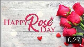 Happy rose day status|happy propose day status|valentines Day WhatsApp status