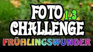 Der Frühling - Runde 3 ❦ Foto-Challenge ❦ PixelDreamer Nimmermehr