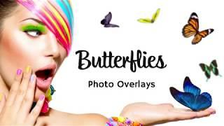 Butterfly Photo Overlays Ultimate Collection