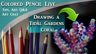 Drawing a Tidal Gardens Coral in Colored Pencil LIVE - Lachri