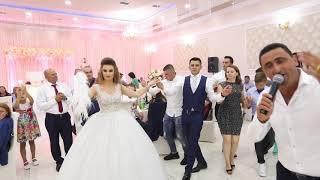Zef beka Live - Hajde te vallzojna Dasma Shqiptare Mark - Ledia 2018