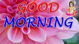 Good Morning WhatsAap Status Video || Good Morning Wishing Status || Beautiful Good Morning Video