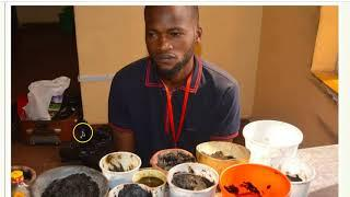 SEE THE BILLIONAIRE SEEKING YAHOO BOYS ARRESTED BY EFCC