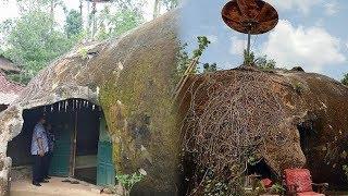 Viral Rumah di Wonogiri Berbentuk Batu seperti di Film Spongbob, Pemilik Rumah: Saya Ingin yang Beda