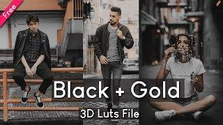 Vijay Mahar 3d Luts File Preset Free Download | Gold & Black Lut 2019 Free Download