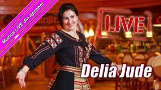 Delia Jude și formația DOR (Sub un pom de lămâiță) - COLAJ LIVE