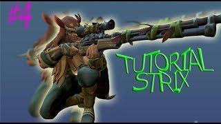 Tutorial Strix/Paladins#4