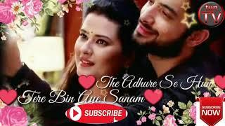 Tere Bin Ay Sanam | Whatsapp Status | watch Now