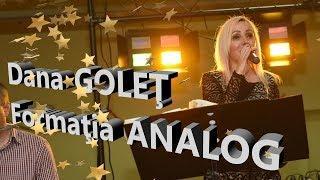 Dana GOLEŢ II Formaţia ANALOG II Bal PĂRĂU 2019 (Exclusiv)
