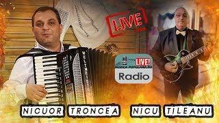 Nicusor Troncea  si Nicu Tiuleanu - Cel mai nou colaj live 2019 muzica de petrecere  hora si sarba