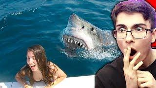 Girl Falls Into Shark Tank.. (SCARY)