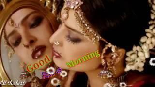 Good Morning Video ???? Whatsapp Status ???? Wishes for Message. quotes. GIF. SMS. Greetings. love s