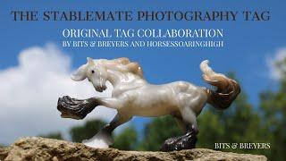 The Stablemate Photography Tag |:| Original Tag by Bits & Breyers and HorsesSoaringHigh!