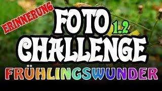 Die Zeit rennt! (Teil 2) ❦ Foto-Challenge ❦ PixelDreamer Nimmermehr