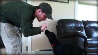 Deaf Man Finds Friendship in Deaf Dog