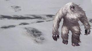 Indian Army Finds Yeti Footprints